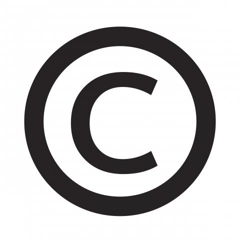 Copyright litigation in The Netherlands: overview